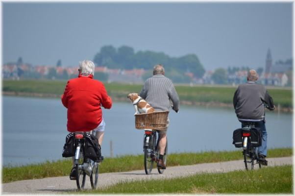 ประกันสุขภาพผู้สูงอายุ-imoney
